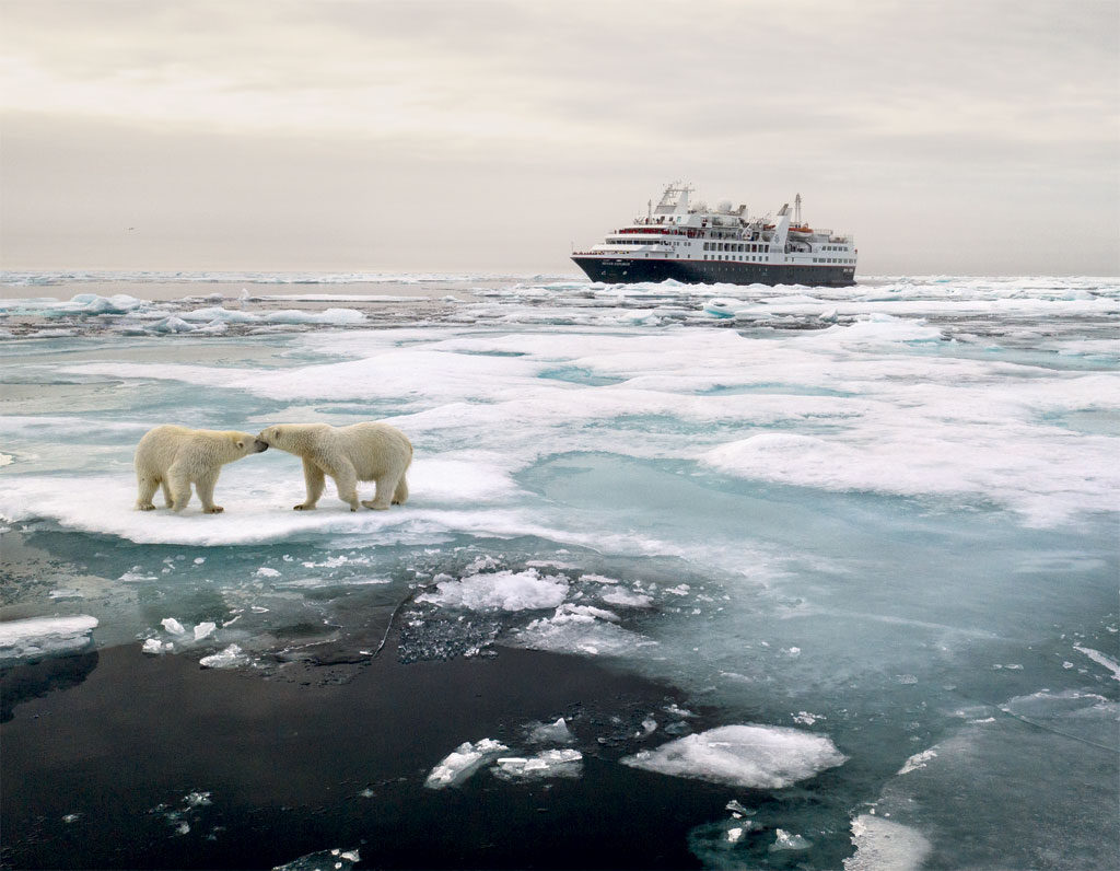 Near Kolyuchin Island, Silversea's guests watched seven polar bears